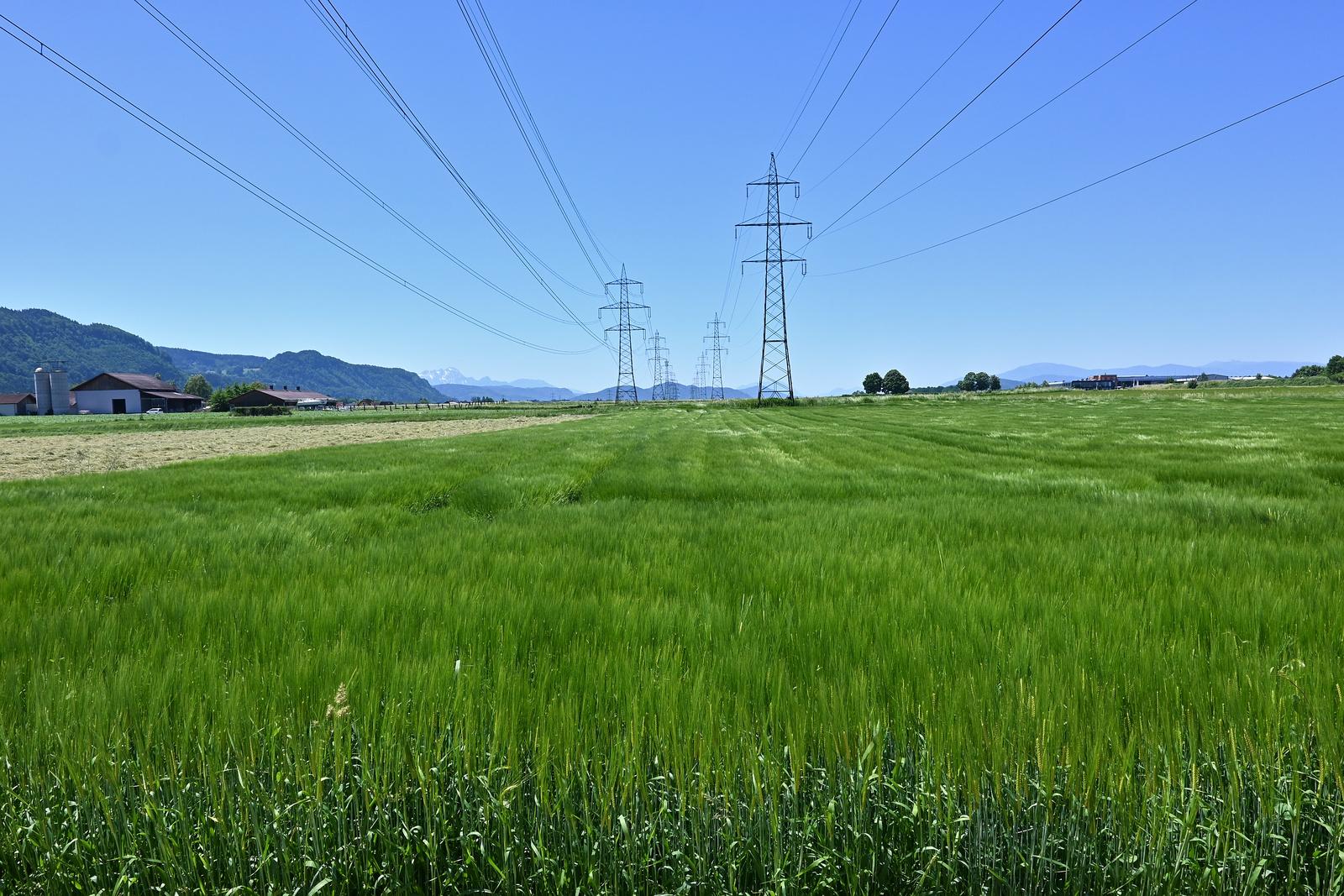 Felder im Wind
